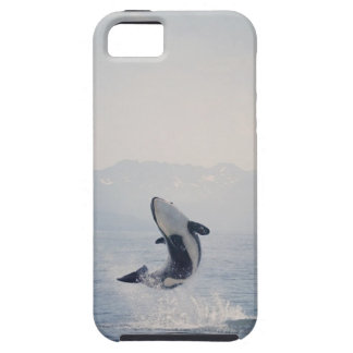 Whale iPhone Case iPhone 5 Cover
