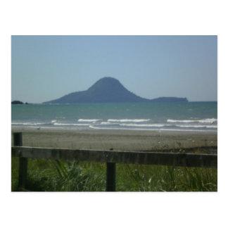Whale Island, New Zealand Postcard