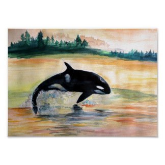 Whale Jumping Orca Value Poster Paper (Matte)