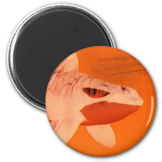 whale maget 2 inch round magnet