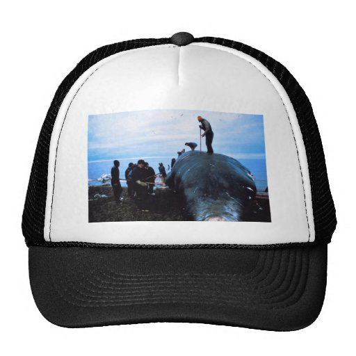 Whale Mesh Hats
