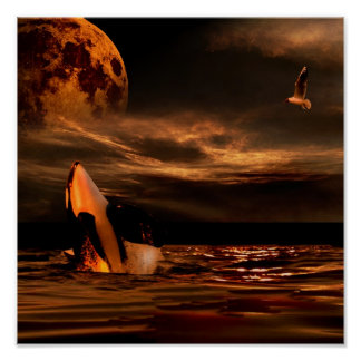 WHALE MOON POSTER
