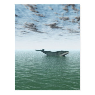Whale on the sea postcard