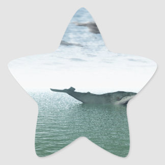 Whale on the sea star sticker