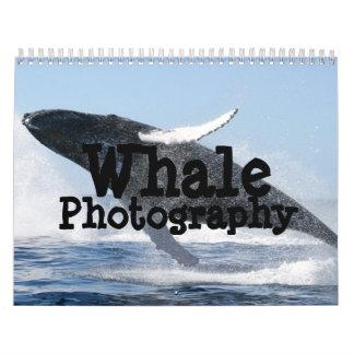 Whale Photography Calendar