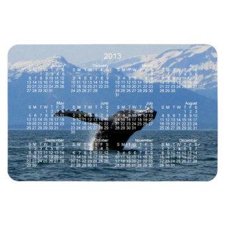 Whale Playtime; 2013 Calendar Magnet
