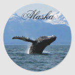 Whale Playtime; Alaska Stickers
