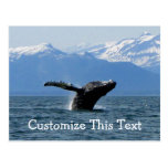 Whale Playtime; Customizable Postcards