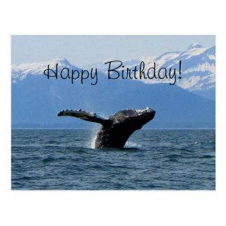 Whale Playtime; Happy Birthday Postcard