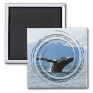 Whale Playtime; No Text Fridge Magnets