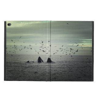 Whale Powis iPad Air 2 Case