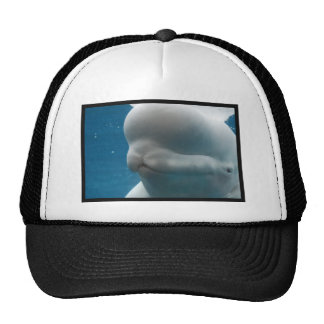 Whale Reflections Trucker Hats
