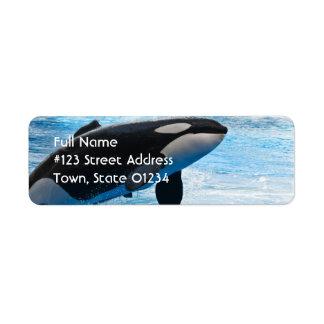 Whale Return Address Label