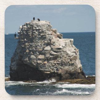 Whale Rock Cork Coaster