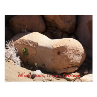 Whale Rock, Globe, Arizona Postcard