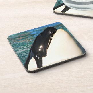 Whale Saying Hello Coaster