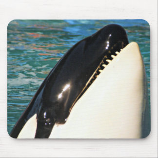 Whale Saying Hello Mouse Pad