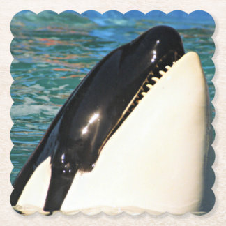 Whale Saying Hello Paper Coaster