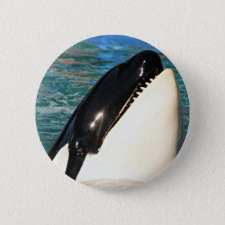 Whale Saying Hello Pinback Button