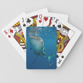 Whale Shark and Fish Playing Cards