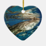 Whale shark and remora fish christmas ornaments