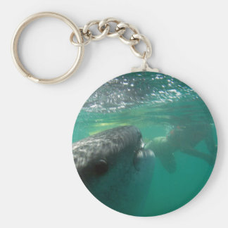 Whale Shark and Swimmer Keychain
