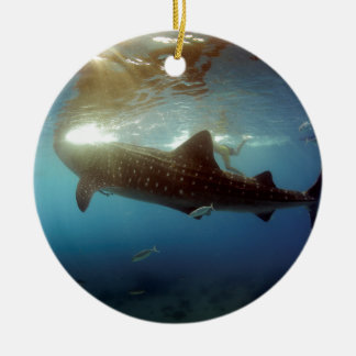 Whale shark feeding ceramic ornament