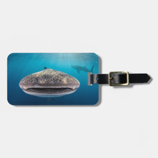 Whale Shark, Front view, Indonesia Bag Tag