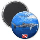 Whale Shark Magnets Imas