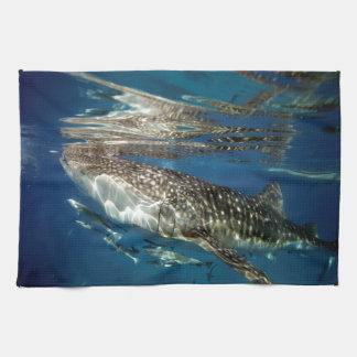 Whale shark Oslob Philippines Kitchen Towels