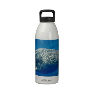 Whale Shark Water Bottle