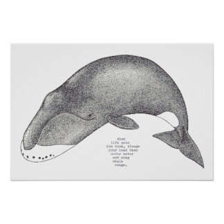 whale songs poster