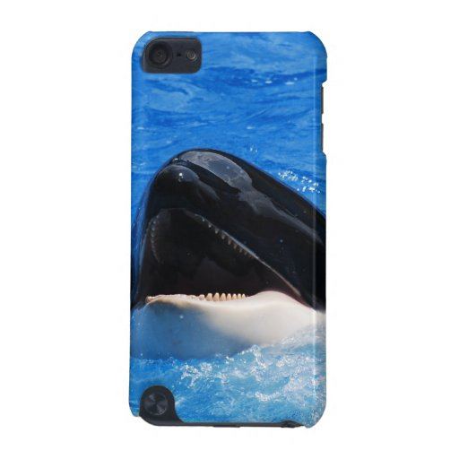 Whale Sounds iTouch Case iPod Touch 5G Covers