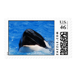 Whale Sounds Postage Stamp