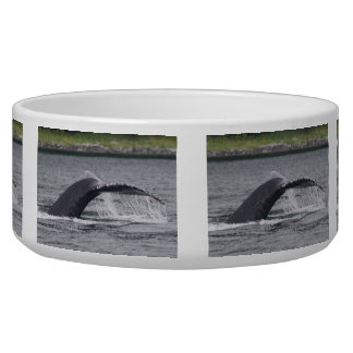 Whale Tail Bowl
