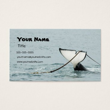 Professional Business Whale Tail Business Card