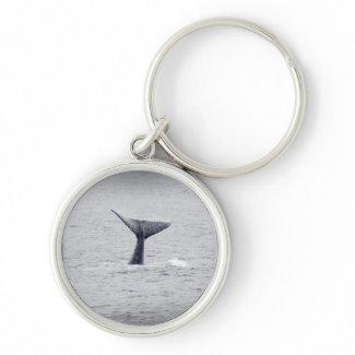 Whale Tail Key Chain keychain