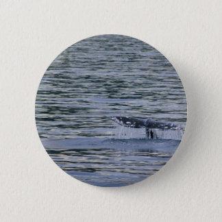 Whale Tail Pinback Button
