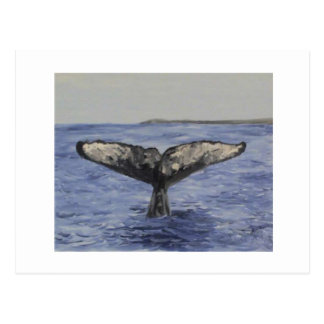 Whale Tail Postcard