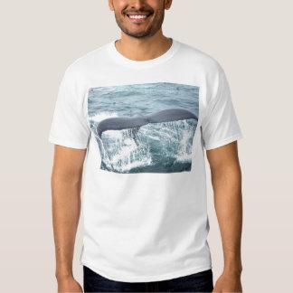 whale tail shirt