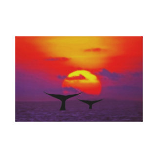 Whale tails at sunset stretched canvas prints