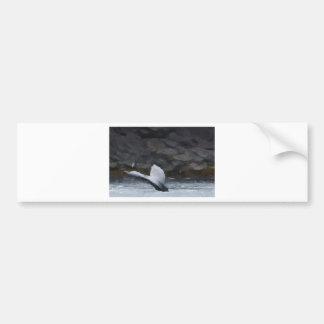 Whale Tale Bumper Sticker