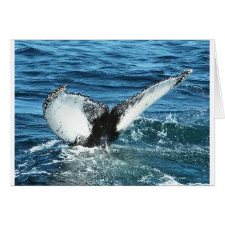 Whale Tale Card
