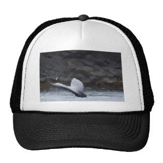 Whale Tale Trucker Hat