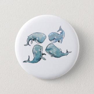 Whale Talk Pinback Button
