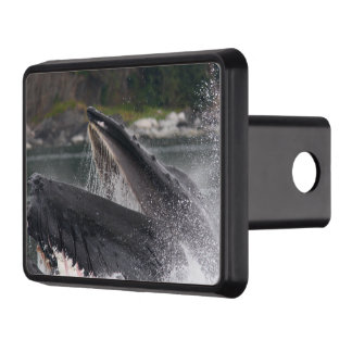 whale trailer hitch cover