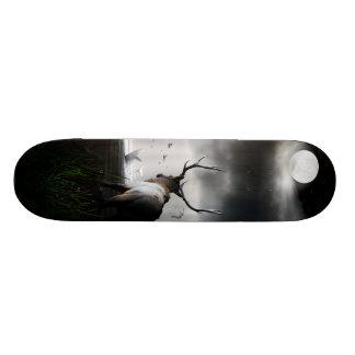 Whale Watch Skateboard Deck
