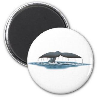 Whale Watcher 2 Inch Round Magnet