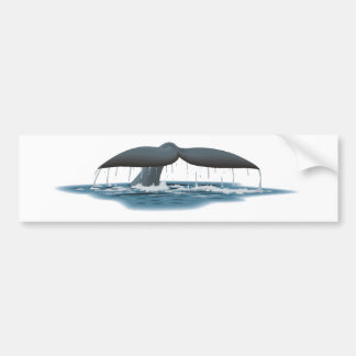 Whale Watcher Car Bumper Sticker