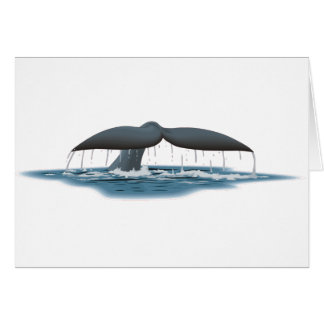 Whale Watcher Card